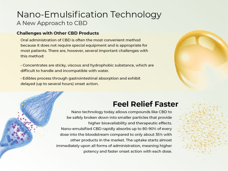 Nano Infographic e1536856115798